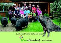 SchweinpfeiftDruckdatei_Seite_1